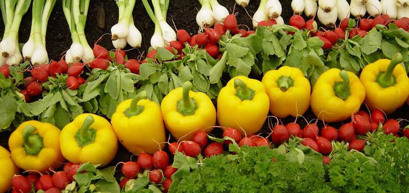 Organic produce sales growth tops 14% in 2020