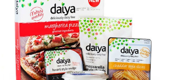 Daiya products