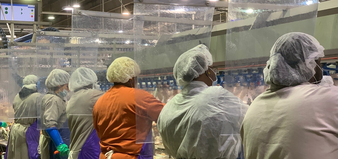 By the numbers: Examining the cost of the pandemic on the meat industry