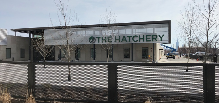 Inside The Hatchery: Chicago's food incubator is laying a foundation for industry growth