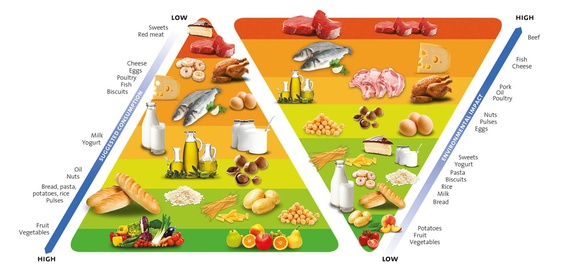 Barilla food pyramid