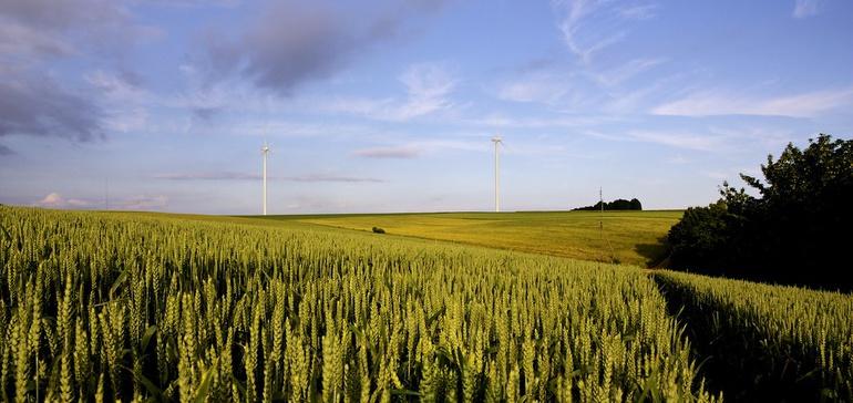 fooddive.com - Lillianna Byington - Big Food turning to regenerative agriculture to meet sustainability goals